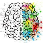 Creativity fueled brain