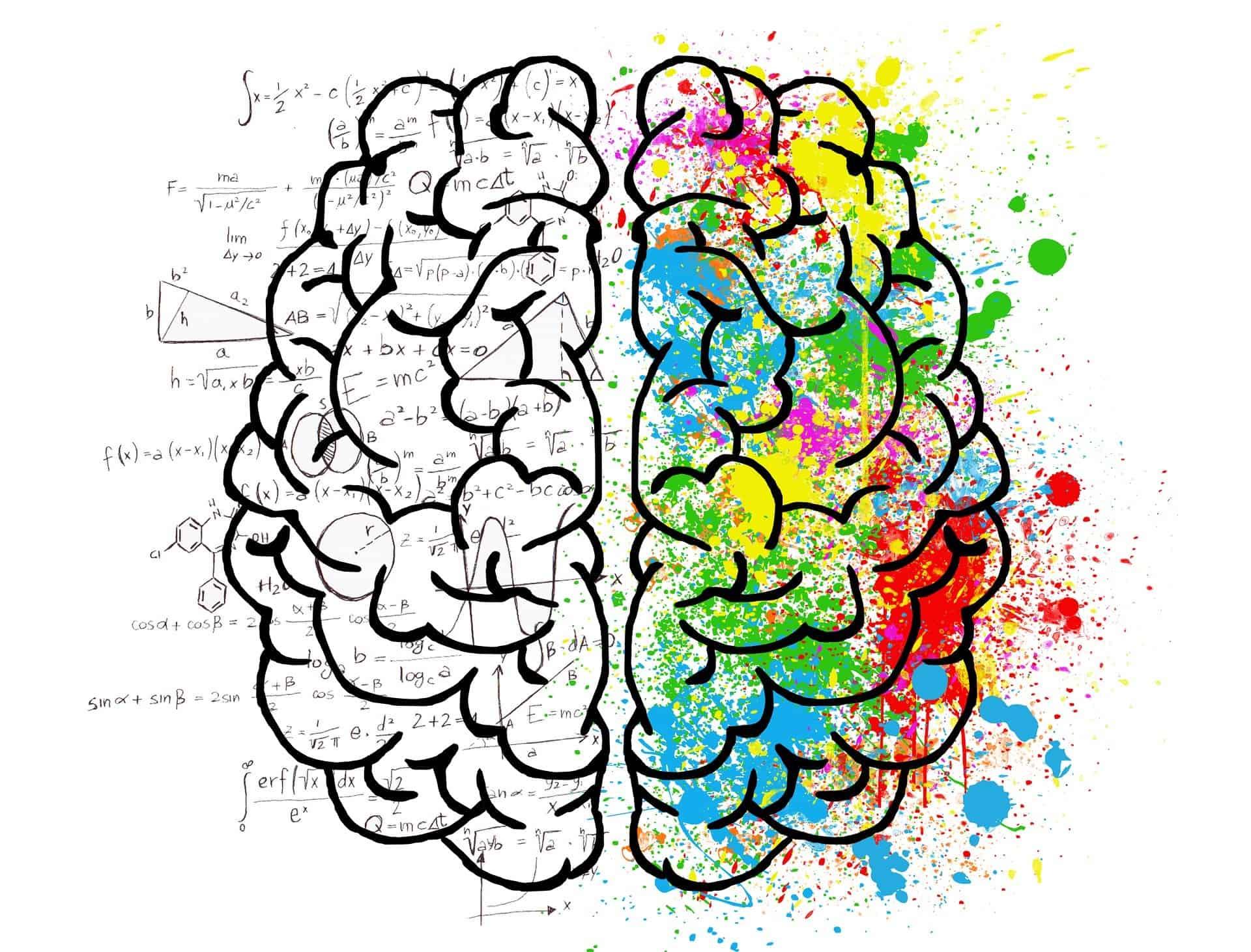 Creativity fueled brain